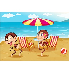 A beach with two monkeys vector