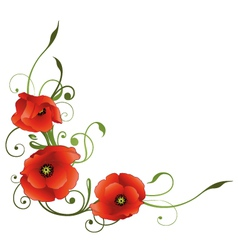 Poppies tendril vector