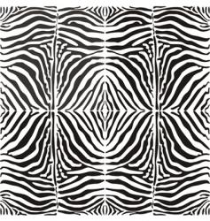 Seamless background skin zebra vector