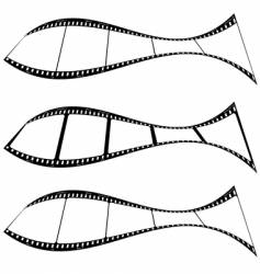 Photo film strip fish vector