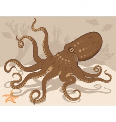Octopus on coral reef vector