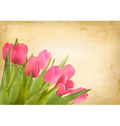 Valentines day background beautiful tulip flowers vector