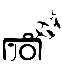 Grunge modern colored camera with bird abst vector