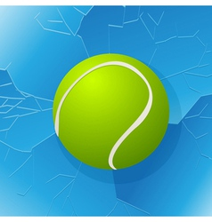 Tennis ball and window vector