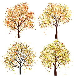 Autumn tree set vector