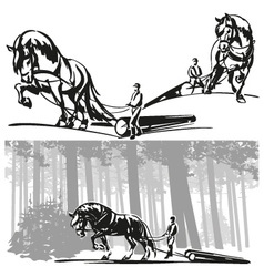 Equine forestry vector