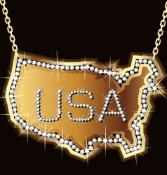 Usa gold vector