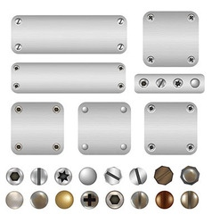 Screws and bolts vector