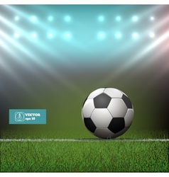 Soccer ball in stadium vector