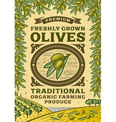 Retro olives poster vector