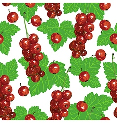 Currant pattern vector