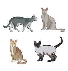 Set of cute cartoon kitties or cats vector