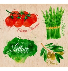 Vegetables watercolor lettuce cherry tomatoes vector