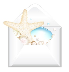 Open envelope with starfish vector
