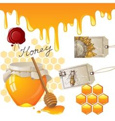 Honey set vector