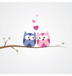 Owls in love vector