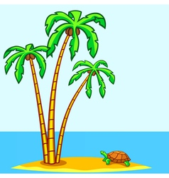 Turtle and palms vector