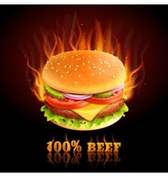 Beef hamburger background vector
