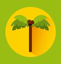 Tree palm vector