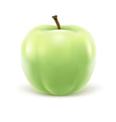 Greeen apple isolated on vector