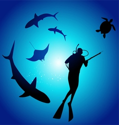 Shark and diver swimming with sharks vector
