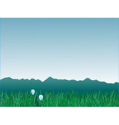 Panorama of mountains vector