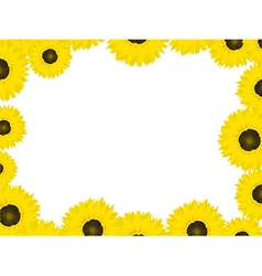 Thanksgiving card sunflowers vector