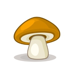 Mushroom isolated on white background vector