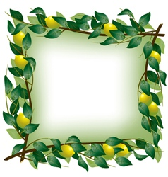 Lemon branch frame vector