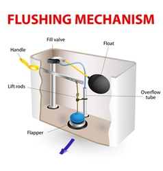 Flushing mechanism flush toilet vector