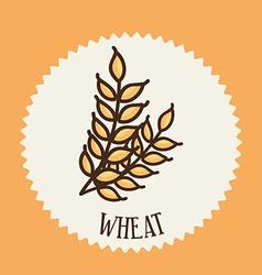 Wheat design vector