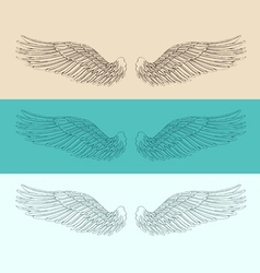 Angel wings set  engraved style vector