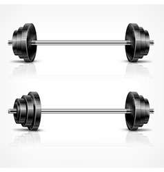 Metallic barbells vector