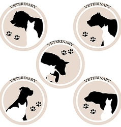 Dog and cat veterinary icons vector