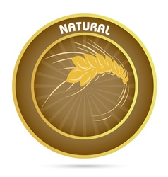 Natural grain vector