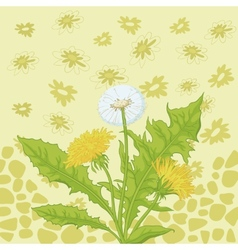 Flowers dandelion and abstract pattern vector