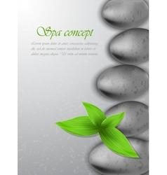 Spa concept vector