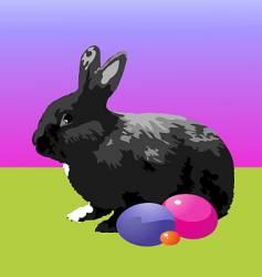 Black rabbit vector