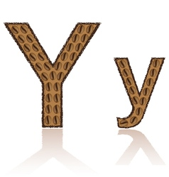 Letter y is made grains of coffee isolated on whit vector