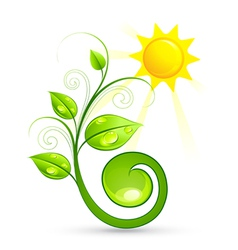 Green plant and sun vector