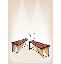 Two retro marimba on brown stage background vector