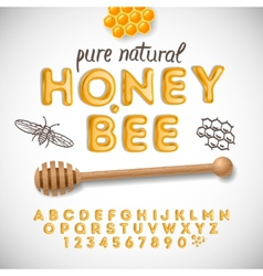 Latin alphabet and numbers made of honey vector