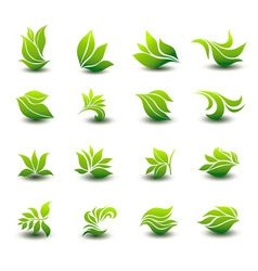 A great set of icons of stylized green leaves vector
