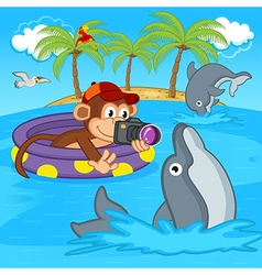 Monkey photograph of dolphins vector