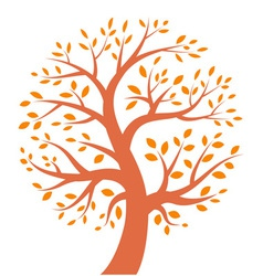 Autumn tree icon vector