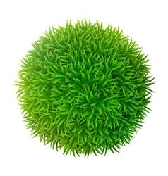 Grassy sphere vector