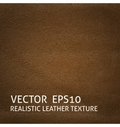 Brown leather background vector