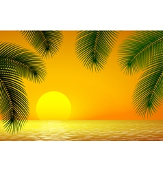 Sunset sea and palm branch vector