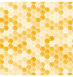Orange honeycomb background vector