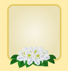 Golden frame with white rhododendron greetg card vector